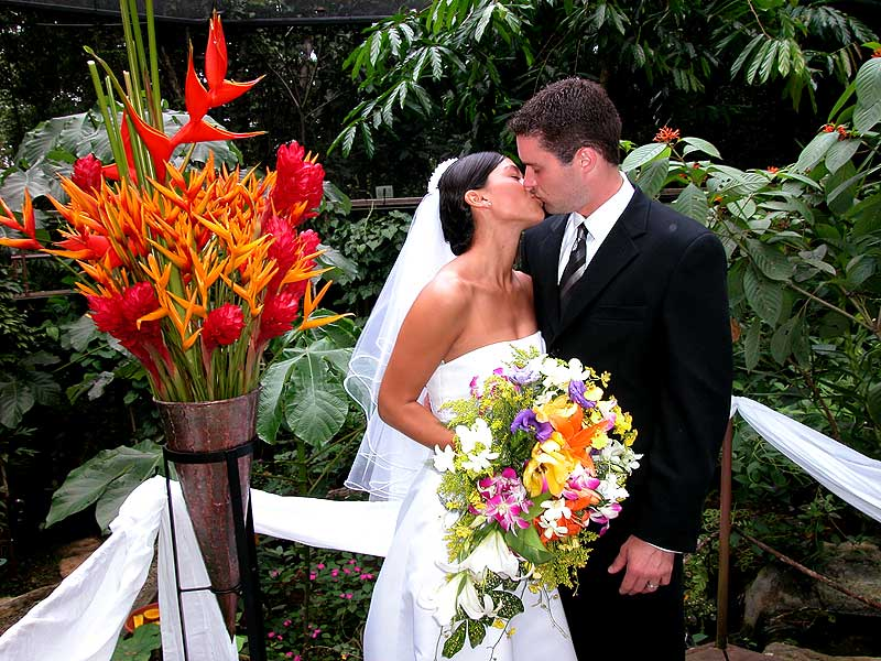Tropical Wedding -