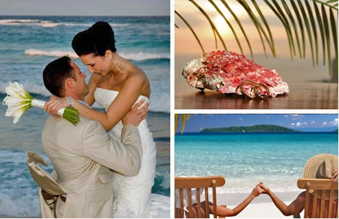 Wedding and Honeymoon